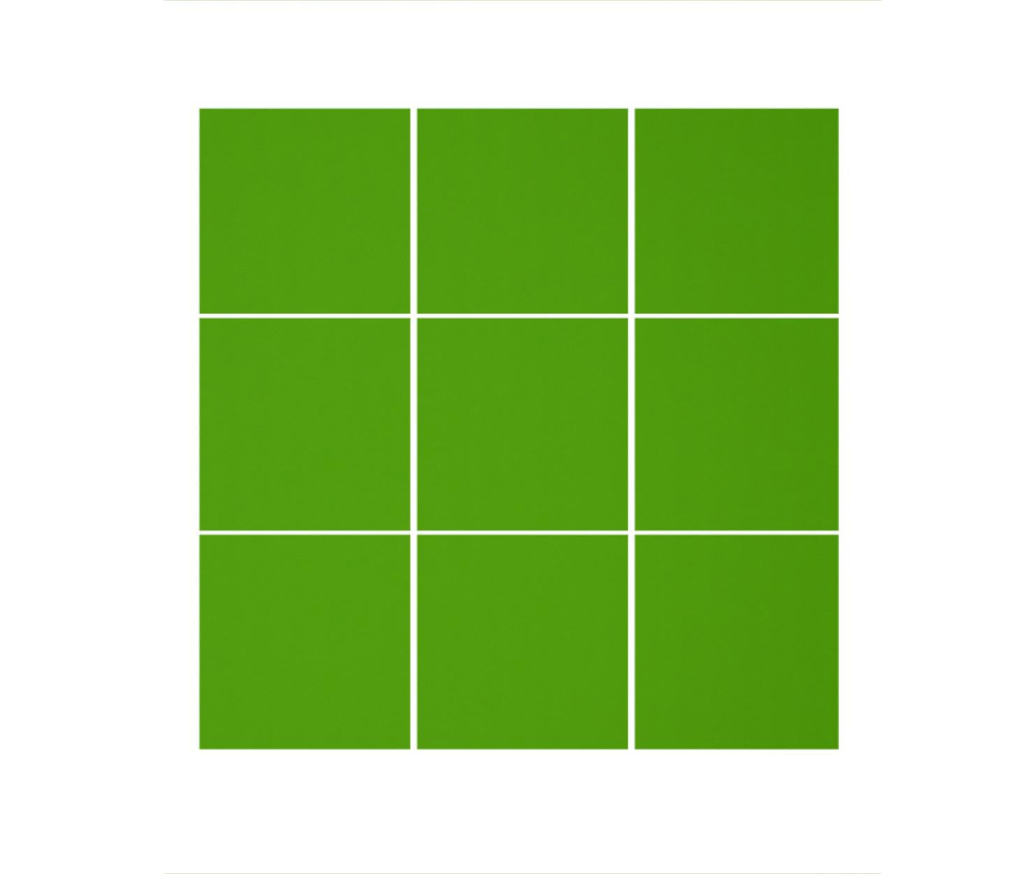 Lindgrün matt C807