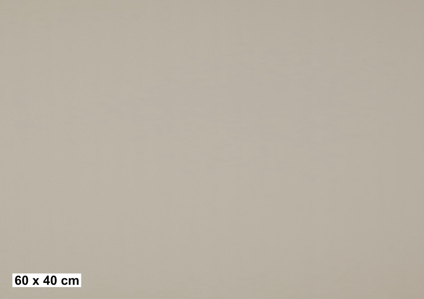 Hellbeige matt / C816-S141